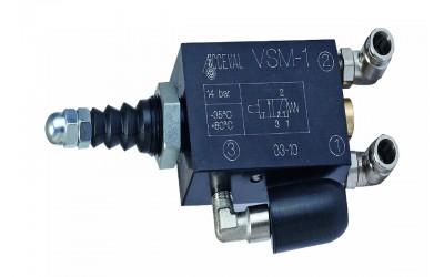 VSM 1 / RPE 2